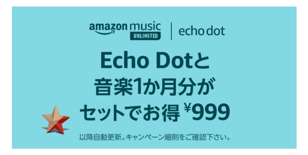 echodot 219円